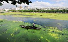 Un fiume della provincia dello Zhejiang, in Cina. (Reuters/Contrasto)