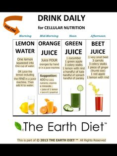 Daily Juice - The Earth Diet