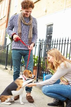 Dog walkers had a greater feeling of security and perceived higher levels of neighborhood surveillance from dog walking than others studied