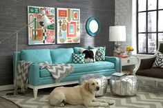 grey base,turquoise sofa and details