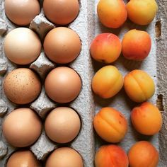 THE LONDON PLANE, SEATTE: Celebrate Easter and Passover weekend in London Plane style, with housemade goods, produce and eggs from local farms, flowers from the shop, dessert from the...