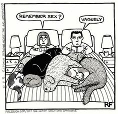 Hilarious. We have 4 dogs but luckily NOT this problem :)