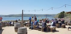 Tomales Bay: oesters voor lunch bij The Boat Oyster Bar, Hog Island Oysters