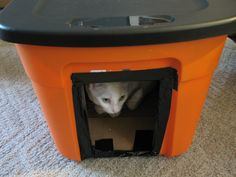 Frugal and Homemade Winter House for Stray Cats