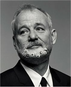 Bill Murray (a lasting impression: Where the Buffalo Roam, Caddyshack, Stripes, Ghost Busters, The Razor's Edge, Scrooged, Quick Change, What About Bob?, Groundhog Day, Ed Wood, Larger Than Life, The Man Who Knew Too Little, Rushmore, Lost in Translation, Coffee and Cigarettes, The Life Aquatic with Steve Zissou, Broken Flowers, Get Low, Hyde Park on Hudson...)