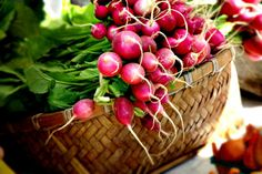 Can't wait for spring radishes! Fruit And Veg, Fresh Fruit, Organic Vegetables, Edible Garden, The Fresh, Organic Gardening, Real Food Recipes, Delish, Food Photography