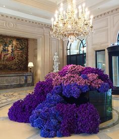 Purple Madness in the lobby of the Four Seasons Hotel George V, Paris by @ Jeff Leatham