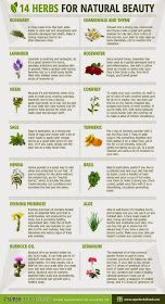 Skinny Diva Beauty: 14 Herbs for Natural Beauty [Infographic]