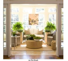 Transitional space, light with plants.