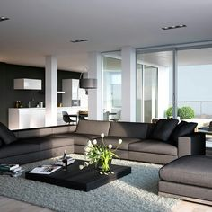 Modern apartment living room design family home idea on living room furniture contemporary design superb apartment of within inspiration ideas for Living Room Carpet, Living Room Grey, Home Living Room, Apartment Living, Living Room Decor, Kitchen Living, Apartment Kitchen, Dining Room, Apartment Sofa