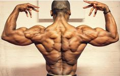 10 Rear Delts Shoulder Workout to Stimulate Growth. Neglect rear delts can lead to shoulder injury. As most people focus on the front and side delts with ex Muscle Anatomy, Body Anatomy, Anatomy Drawing, Anatomy Art, Human Anatomy, Human Poses Reference, Body Reference, Anatomy Reference, Fitness Gym