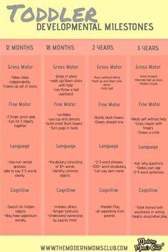 Toddler Developmental Milestones — Real Mom-ish – tips Child Development Stages, Development Milestones, 16 Month Old Development, Child Development Activities, Physical Development, Baby Development Chart, Language Development, 2 Year Old Milestones, Toddler Milestones