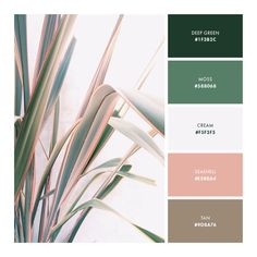 color palette, pink, green, brown, soft, neutral
