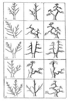 18 idées supplémentaires pour votre tableau bonsaï