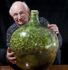 giardino bottiglia