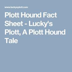 Plott Hound Fact Sheet - Lucky's Plott, A Plott Hound Tale