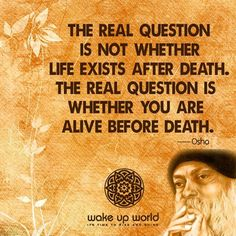 Are you alive?