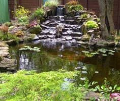 cmo hacer un estanque para el jardn landscaping gardens and pond ideas