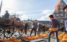 Gouda Cheese Festival on Thursday mornings