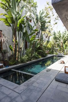 Beginner's Guide To Tropical Landscaping Design Plans – My Best Rock Landscaping Ideas Backyard Pool Designs, Swimming Pools Backyard, Swimming Pool Designs, Garden Pool, Tropical Pool, Tropical Landscaping, Backyard Landscaping, Outdoor Pool, Outdoor Spaces