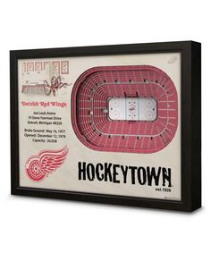 Loving this Detroit Red Wings Joe Louis Arena Wall Art on #zulily! #zulilyfinds