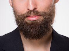 full bushy beard styles for men