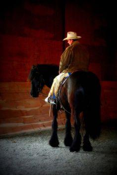 Horse Training Secrets Revealed