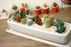 Veja mais no joiasdolar.blogspot.com.br ♥ *Em cada post do blog constam os créditos das imagens* #decor #inspiração #inspiration #inspiración #ideas #ideias #joiasdolar #garden #cactus