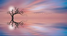 The Tree by Nasser Osman
