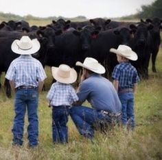 Dad and his 3 young sons out in a pasture checking their cattle ~ so cool....