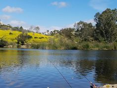 Best place to fish in Orange County, Laguna Niguel lake has trout , bass, catfish and bluegill.