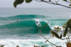 Red frog bungalows: my friends surfing Panama, I will ride about half that size of wave please.