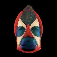 Masked Figures Found in Macro Insect Photography by Pascal Goet