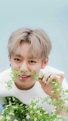 Jung Daehyun 정댕현 Don't eat the plant Daehyun Himchan, Youngjae, K Pop, Red Bangs, Bang Yongguk, Jung Daehyun, Bap, Anime Cosplay, Kpop Groups
