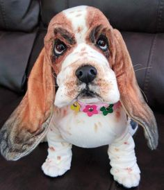 ANGELINA a Large Basset Hound puppy dog By Brigitte Crowe - Bear Pile