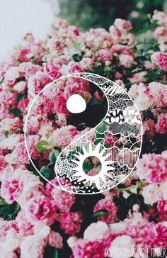 Find images and videos about pink, flowers and wallpaper on We Heart It - the app to get lost in what you love. Tumblr Wallpaper, Wallpapers Tumblr, Trendy Wallpaper, I Wallpaper, Cute Wallpapers, Flower Wallpaper, Ying Yang Wallpaper, Phone Wallpapers, Phone Backgrounds