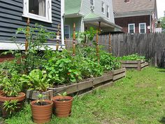 """Building cheap raised beds step-by-step (check that pallets are labelled """"HT"""" heat treated NOT """"MB""""  for chemicals)"""