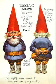 "Gnomes : I love this book ... I'm NOT ""IN"" Love with this book, I just appreciate it :D"