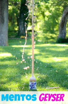 """Mentos Geyser -- I've done this at a couple of parties and both kids and adults always get a kick out of it.  Lots of fun, cheap, and VERY easy!  I have the """"geyser tubes"""" made just for this and it makes everything easier.  They're often on sale after summer or after holidays if they're marked as stocking stuffers."""