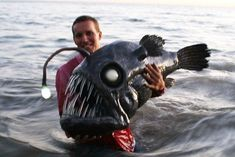 angler fish / deep sea fish by SculpturesBYChris on Etsy Weird Sea Creatures, Ocean Creatures, Angler Fish, Underwater Creatures, Deep Sea Fishing, Bizarre, Sea Monsters, Under The Sea, Animals Beautiful
