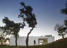 This bright white house in Portugal uses the trees on its hillside site to create a sense of intimacy.