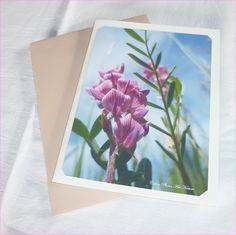 Carte double Orchidée sauvage 10x15cm de Céline Photos Art Nature Celine, Nature, Photos, Flowery Background, Colour Shade Card, Wild Orchid, Wild Flowers, Love Birds, Photography