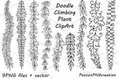 Doodle Climbing Plant ClipArt - Illustrations - 1