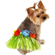 Dog Hula Skirt - Party City