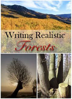 Expert Terence Newman informs writers on how to tell the wood from the trees