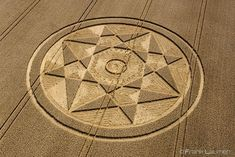 Crop Circle at The Rollright Stones, Nr Little Compton, Oxfordshire. Reported 5th August 2017