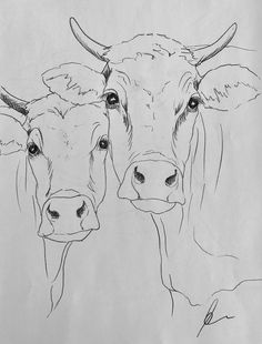 Cow art drawing www hoerskens de – Artofit Animal Paintings, Animal Drawings, Art Drawings, Pencil Drawings, Cow Painting, Painting & Drawing, Cow Drawing Easy, Cow Art, Art Techniques