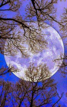 Moon - Luna