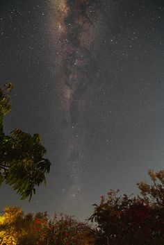 African Night Sky.  ... Light pollution just doesn't allow the majority of us to see our Milky Way galaxy.  Everyone should experience the sight -- even if you have to travel to those few and far between places that are out in the middle of nowhere. It is well worth the effort especially if you choose to coincide that trip with meteor showers.