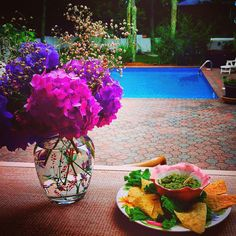 Hamptons House of Gardens Bed and Breakfast #dinosaurkale #guacamole find the recipe here